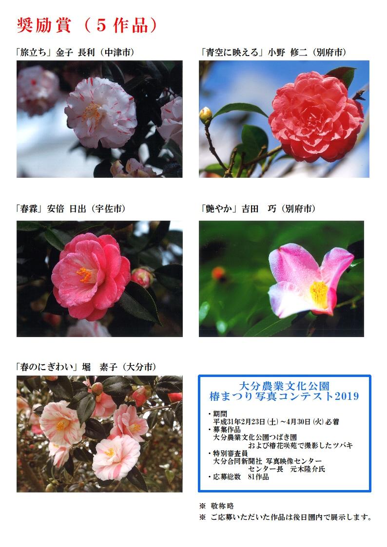 椿まつり写真コンテストHP用受賞作品発表4A4