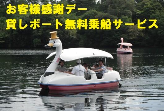191121貸しボート・白鳥さん