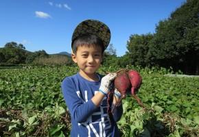 200401親子de農業体験