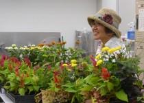 200520お花の教室