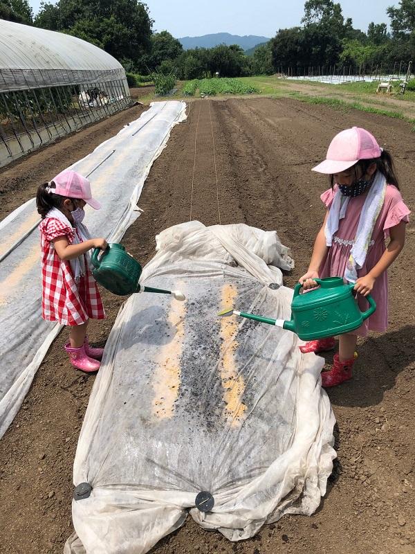 200802親子de農業 (1)