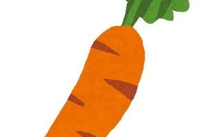 ninjin_carrot